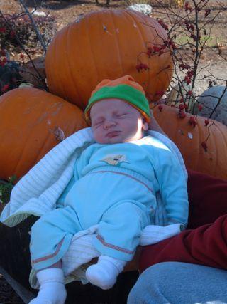 Our Pumpkin2